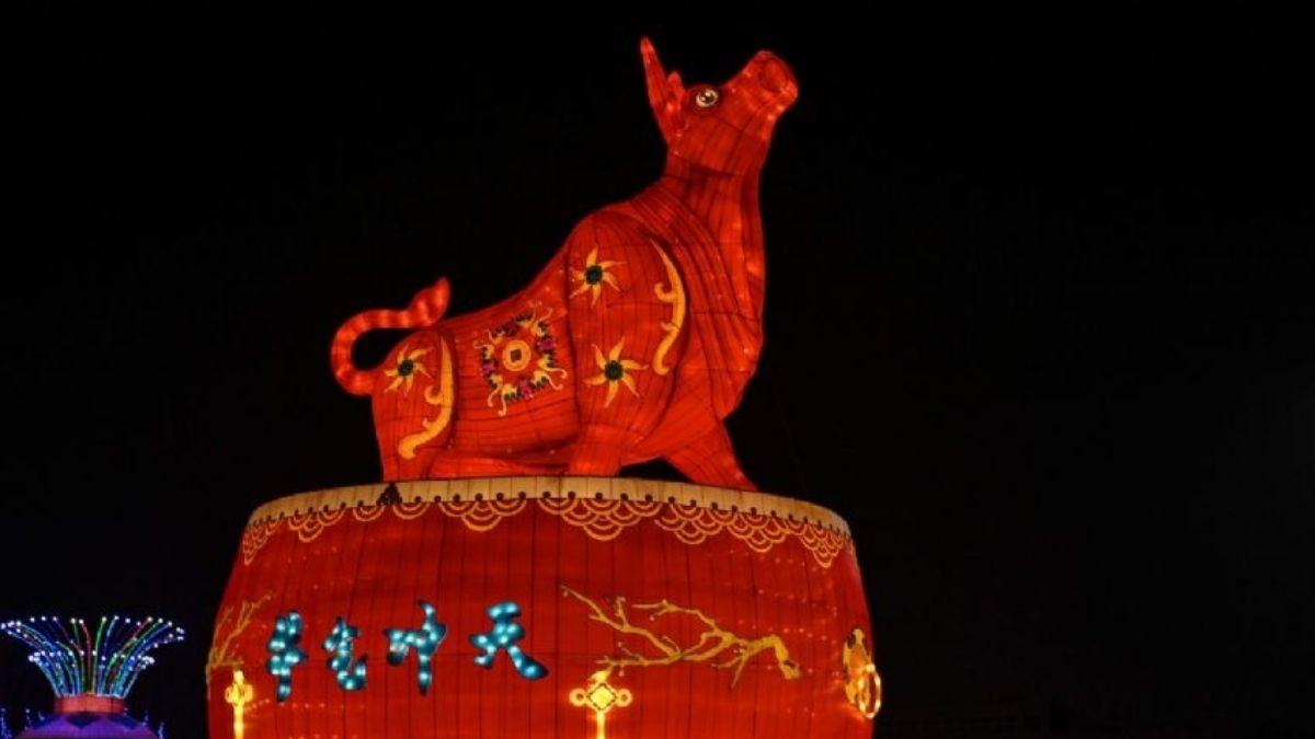 Comienza el Año Nuevo Chino: mitos y curiosidades del año del buey