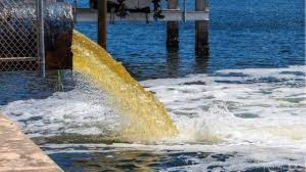 Estas son las afectaciones tras el derrame de aguas residuales en Playa  Norte de Isla Mujeres | PorEsto